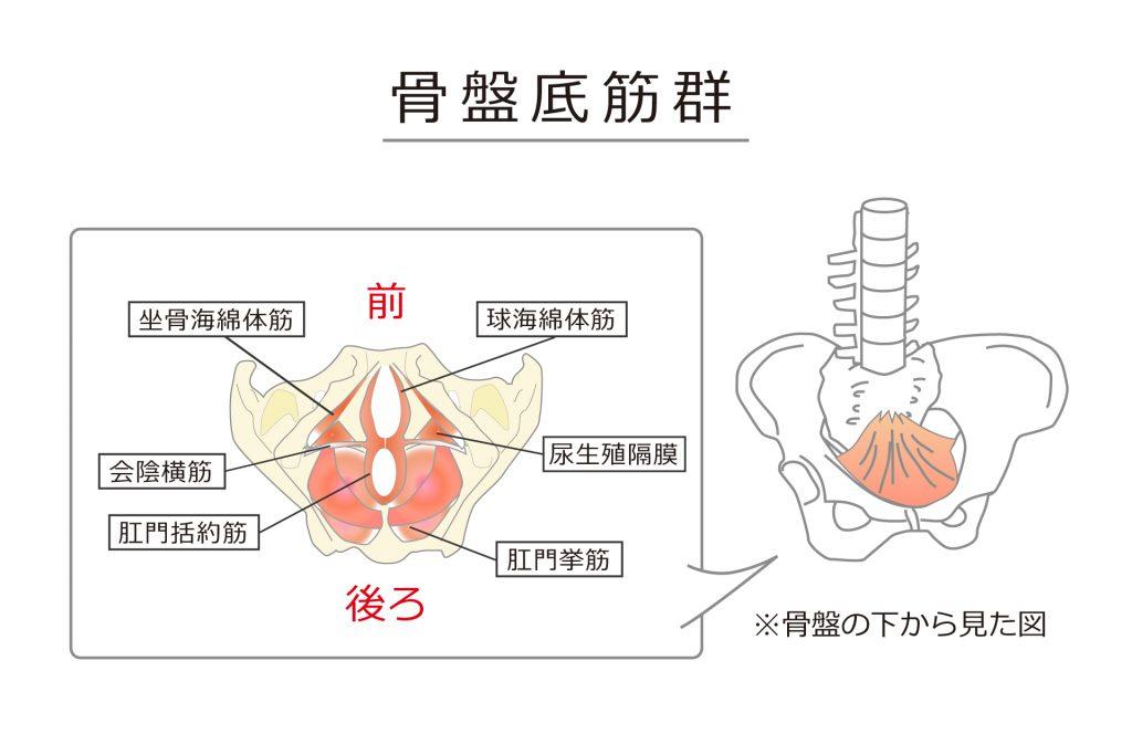 画像に alt 属性が指定されていません。ファイル名: shitabara1_1-1024x683.jpg